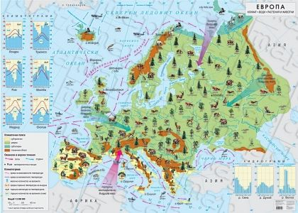 Климат. Води. Растения и животни. Европа