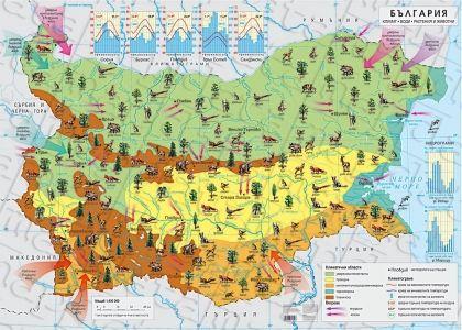 Климат. Води. Растения и животни. България